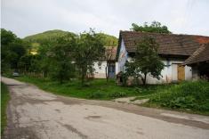 Dolu dedinou