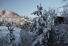 Zima vIliavke